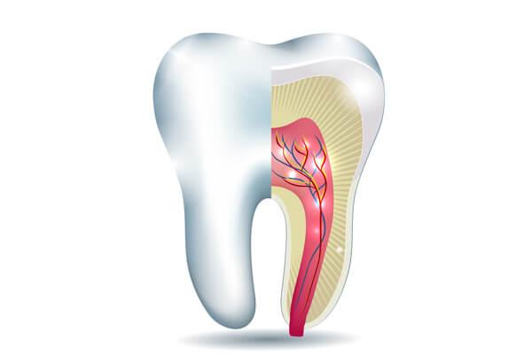 Kanal Tedavisi - Endodonti - Nedir?